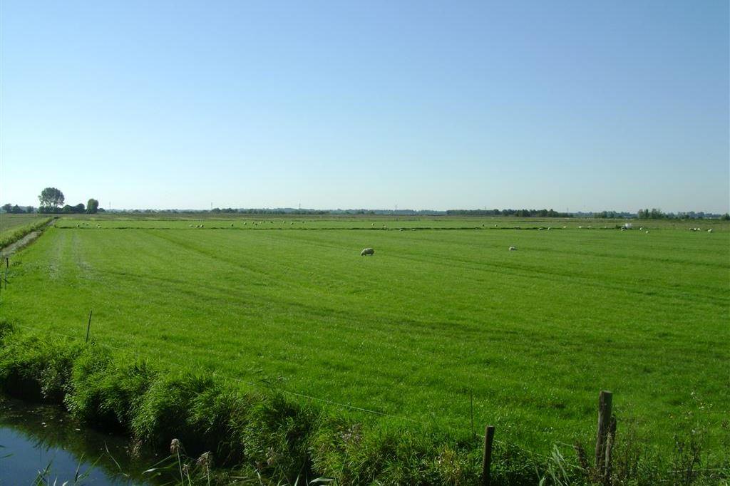 View photo 2 of Zuiddijk