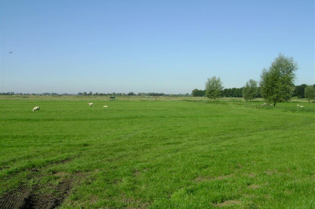 View photo 4 of Zuiddijk