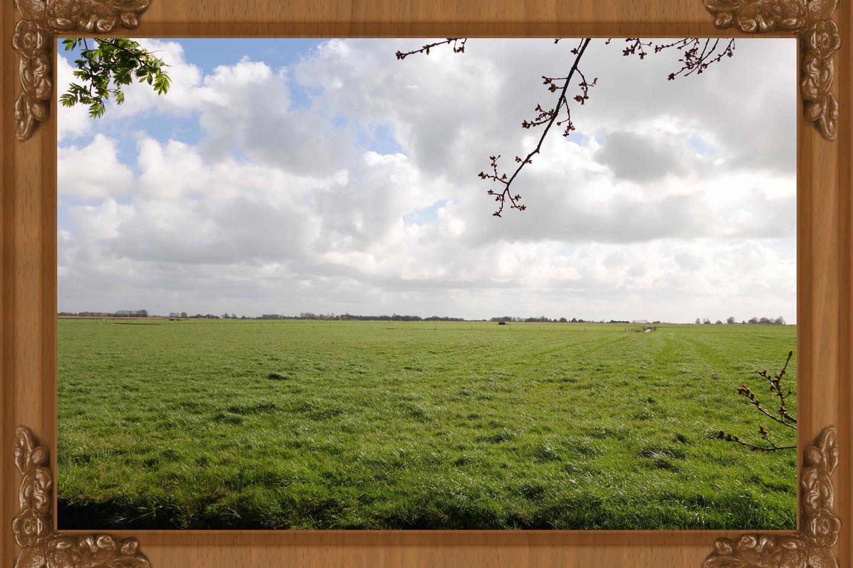 Bekijk foto 2 van Domela Nieuwenhuisweg 100