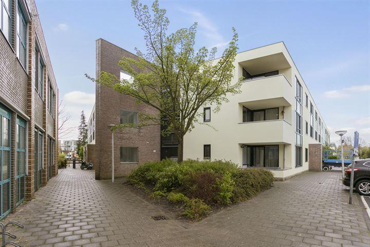 Theda Mansholtstraat 10