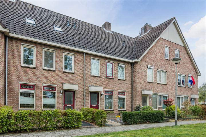 Schoonhout 166
