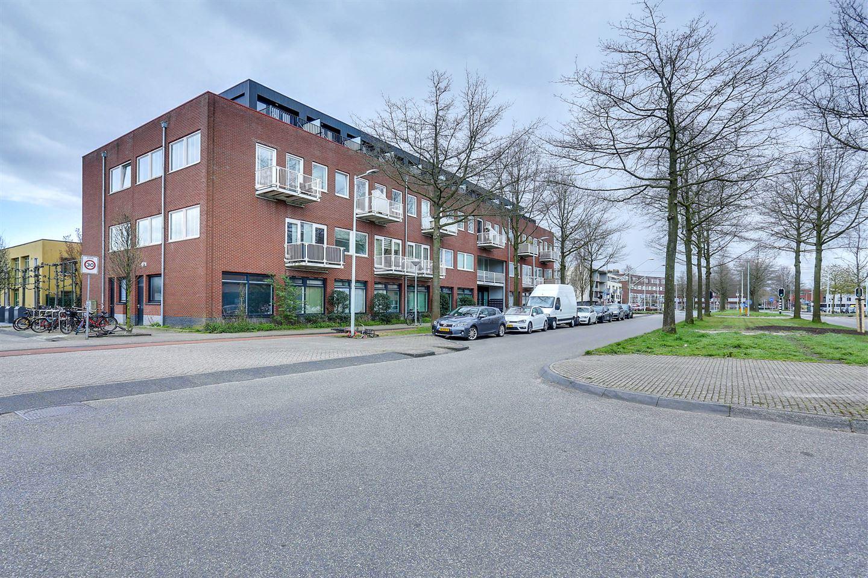 Bekijk foto 1 van Laan van Vlaanderen 141 A2*