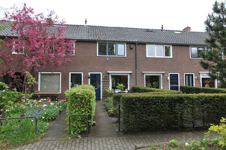 Jasmijnstraat 44