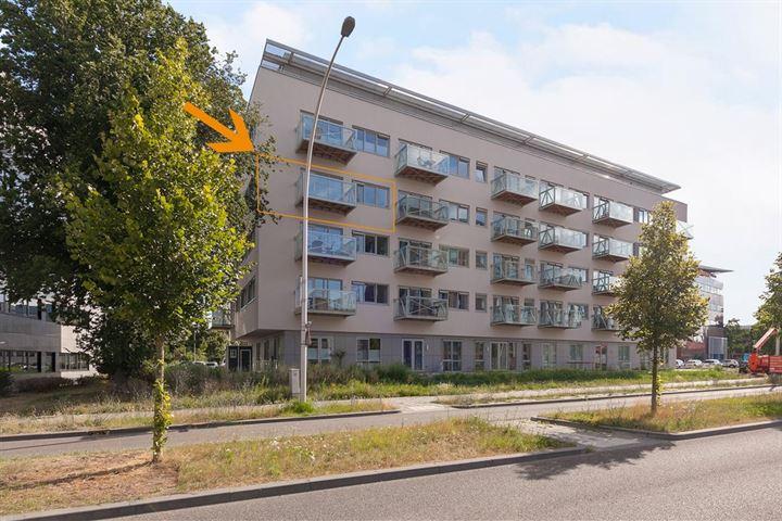 Govert Flinckstraat 21 H