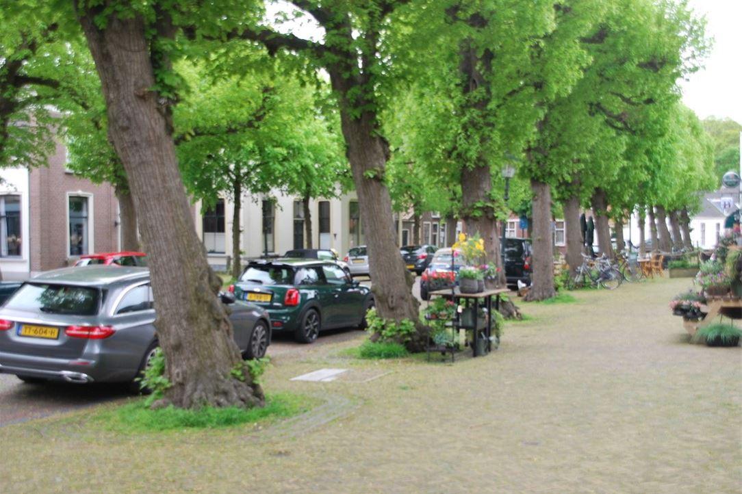 View photo 3 of Voorstraat 28