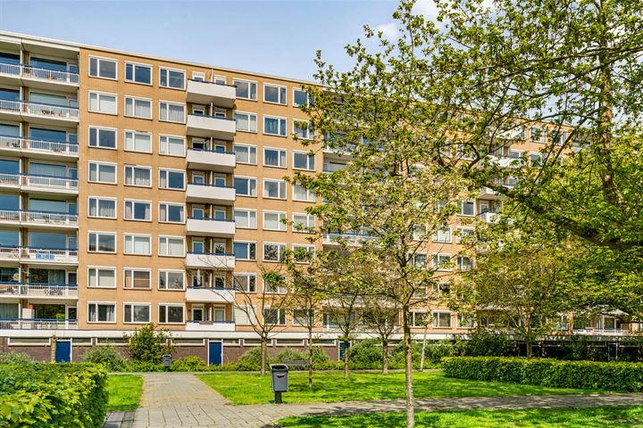 Van Nijenrodeweg 93