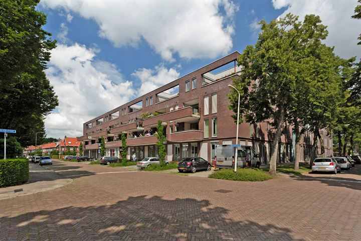 Graaf Hendrik III plein 160