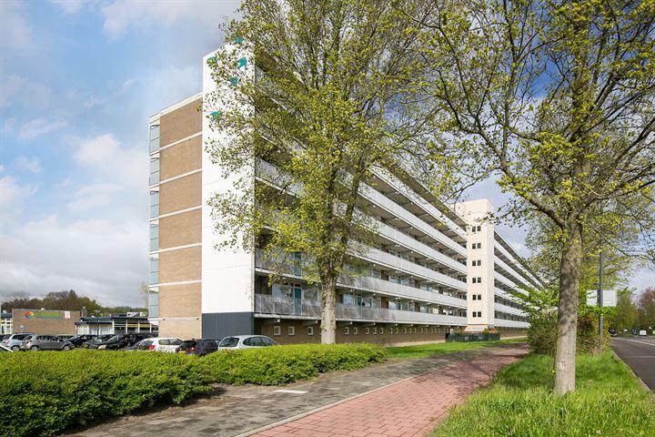 Zwaluwstraat 44