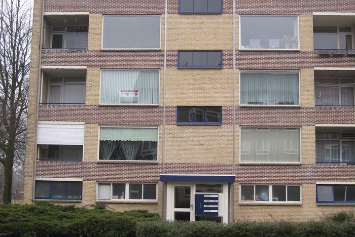Dommelstraat 112 3