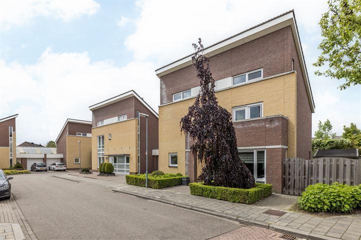 Felix Ruttenstraat 19