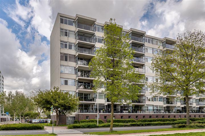 Pruylenborg 199
