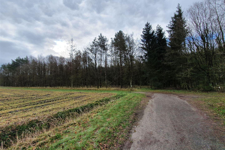 Bekijk foto 2 van nabij Gasselterweg