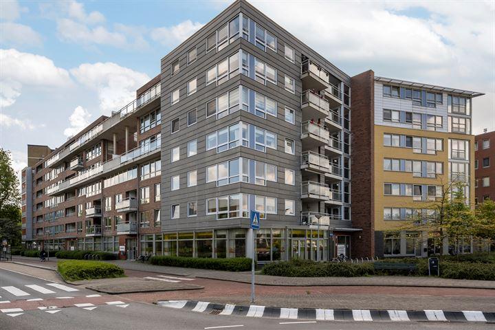 Nieuwe Damlaan 768