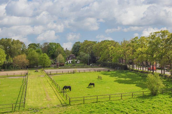 Horstweg 15