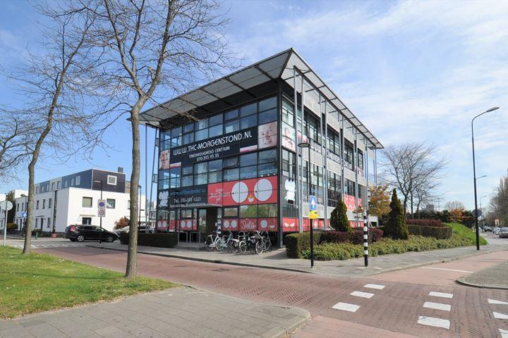 Sir Winston Churchillln 490 #, Rijswijk (ZH)