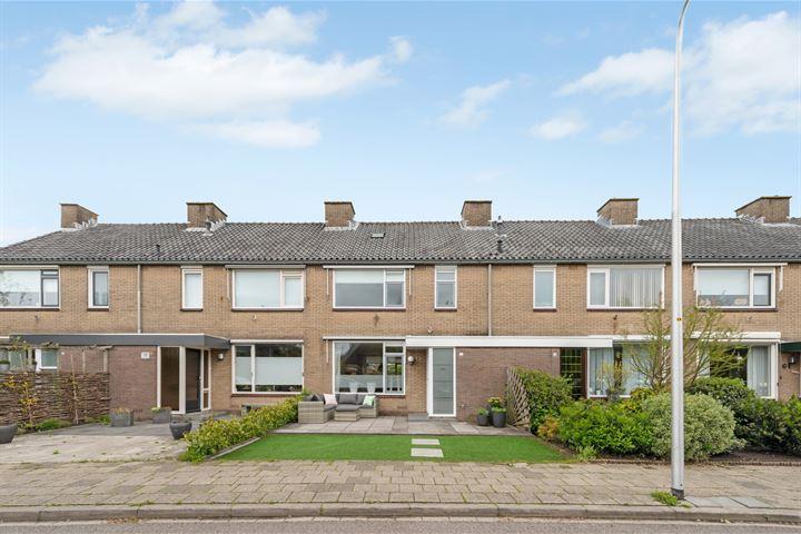Bosweg 52