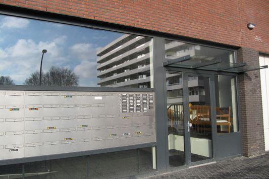 Bekijk foto 3 van Houtweg 235