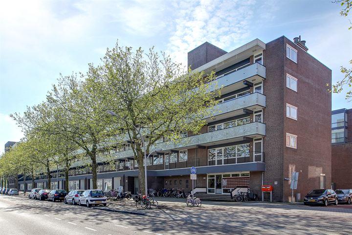Ruys de Beerenbrouckstraat 79