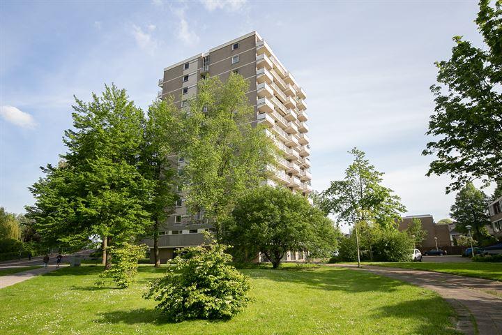 Graaf Janstraat 35