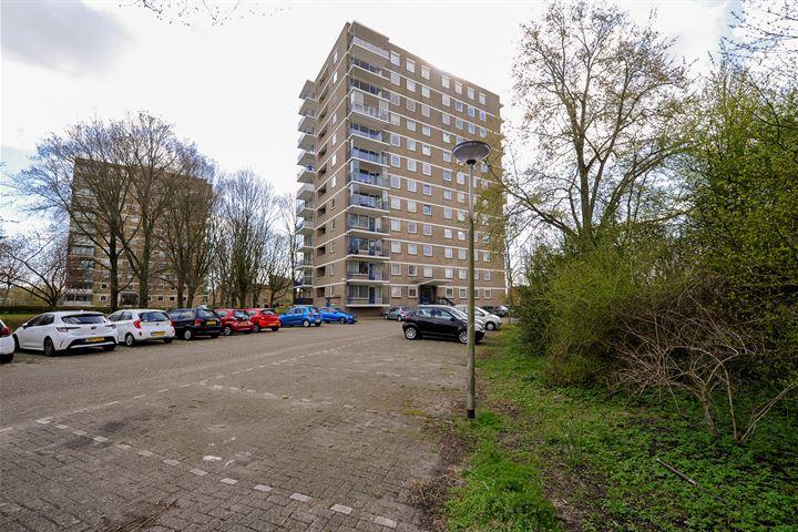 Denenburg 153