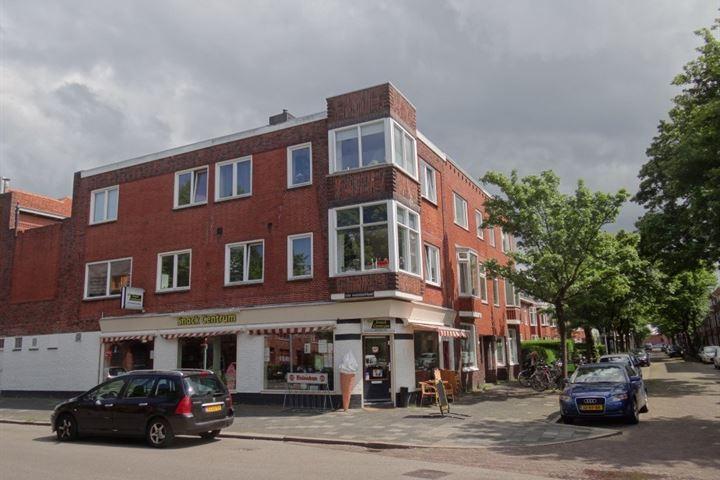 Professor Rankestraat 53