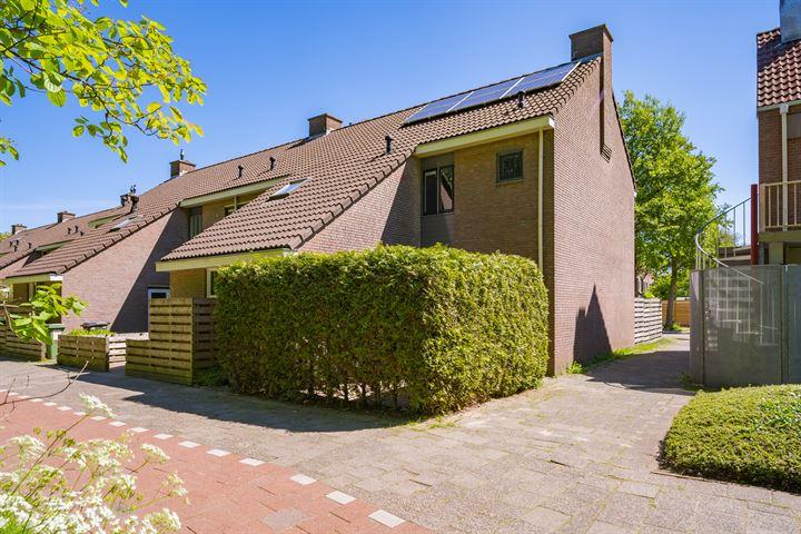 van Wageningenstraat 55