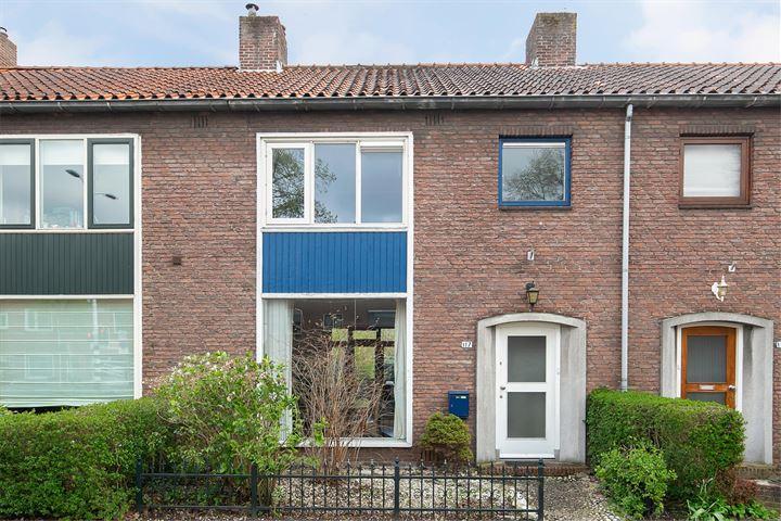 Hoge Rijndijk 117