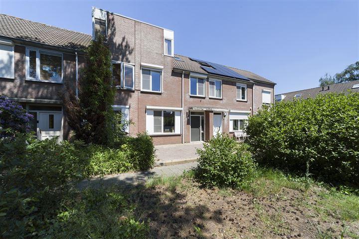 Hollandhof 6