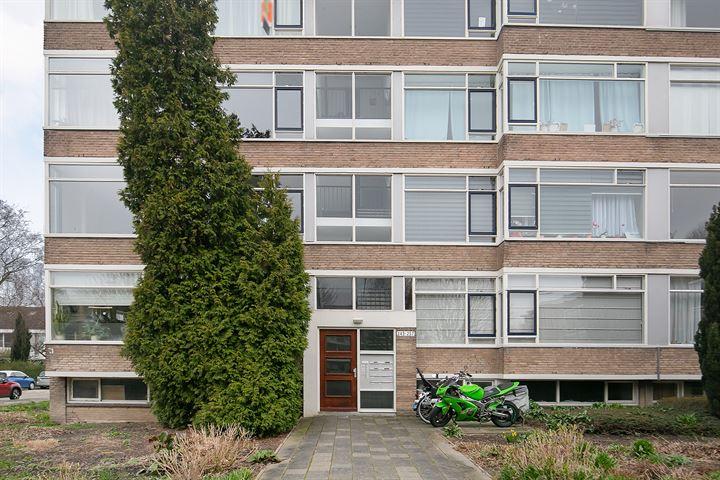 Nieuwenoord 253