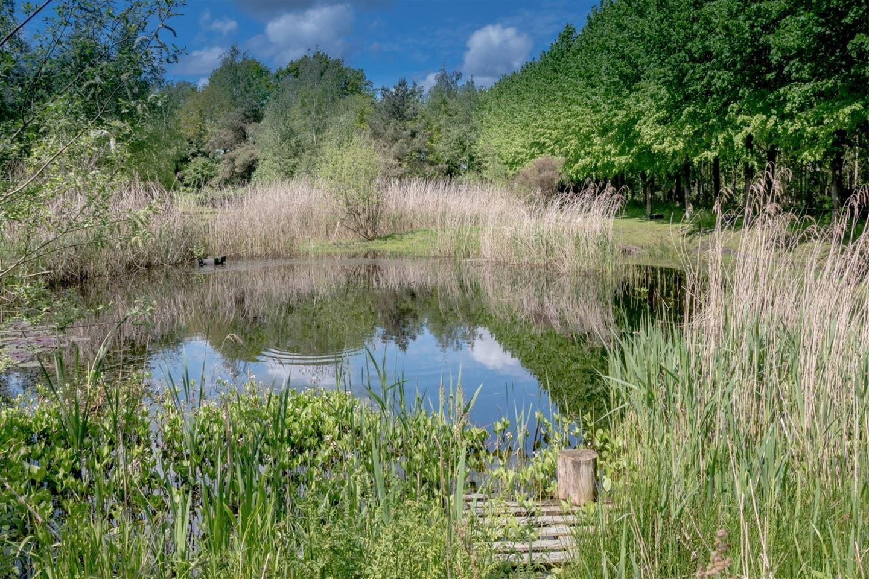 Bekijk foto 5 van Boijlerweg 8