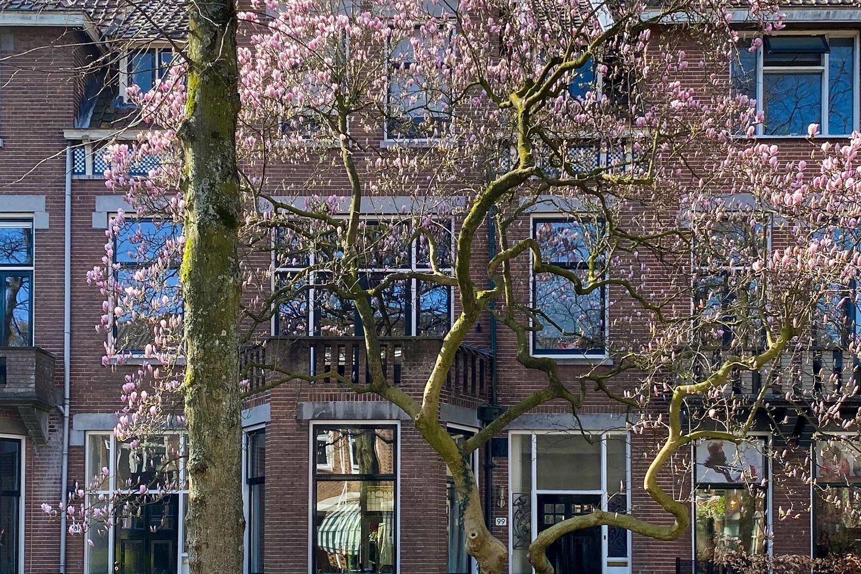 View photo 1 of Prins Hendriklaan 99