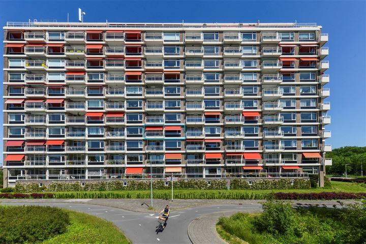 Plantijnstraat 45