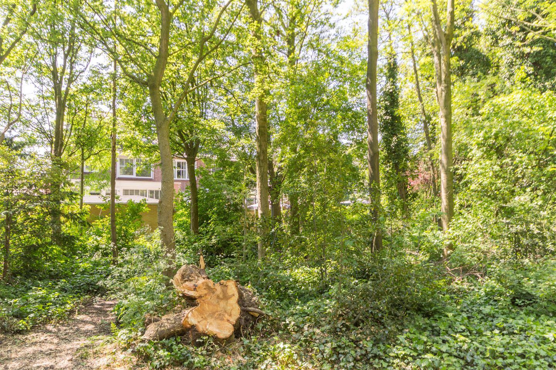 Bekijk foto 3 van Naaldwijkseweg 310