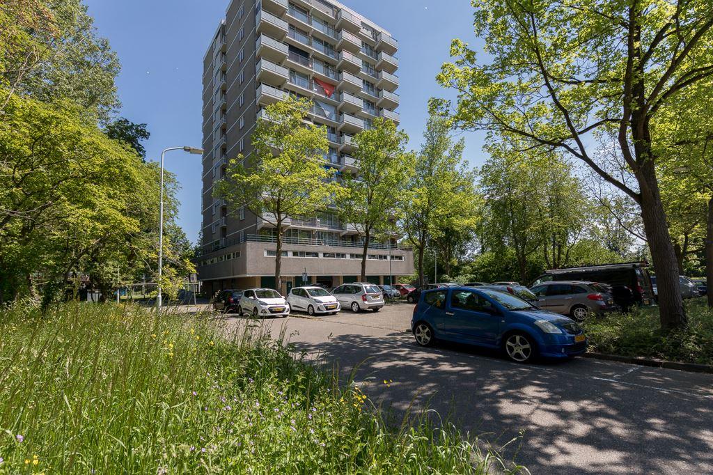 Bekijk foto 1 van Graaf Janstraat 50