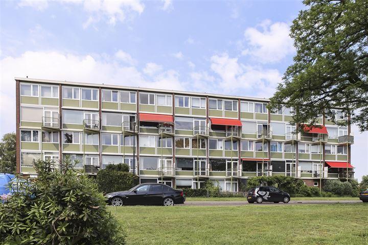 Ruys de Beerenbrouckstraat 133