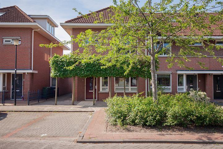 Willem Bilderdijkstraat 16