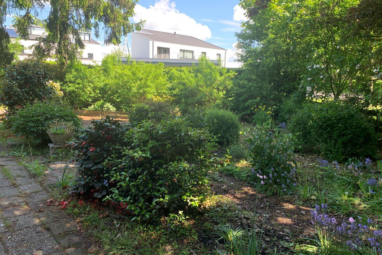 View photo 4 of Papaverweg 75