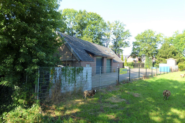 View photo 2 of De Kikvors