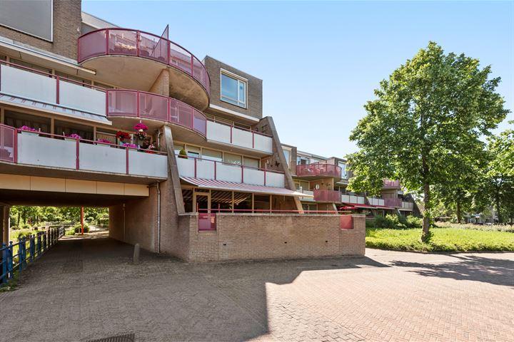 Hooilandplein 55