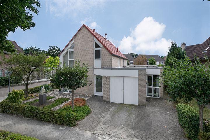 Rijnstraat 17