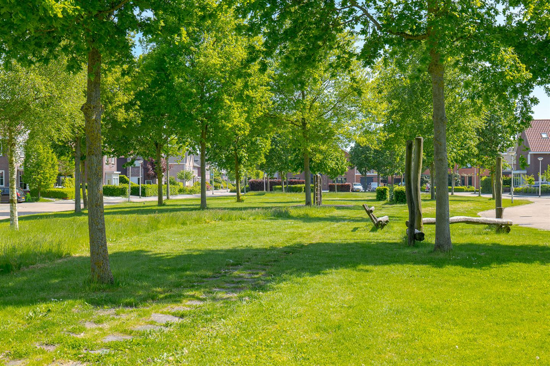 Bekijk foto 4 van Abeelhout 8