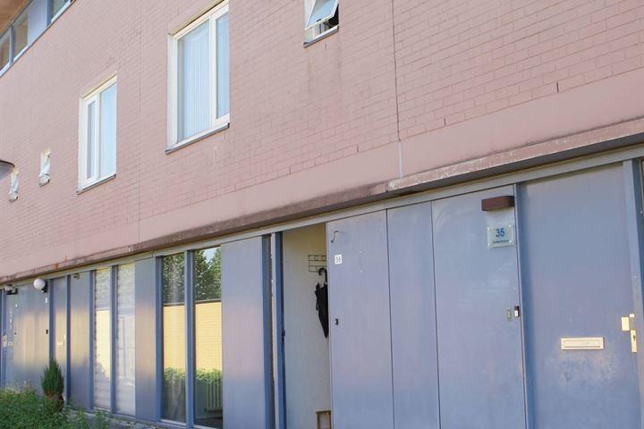 Pigmenthof 36