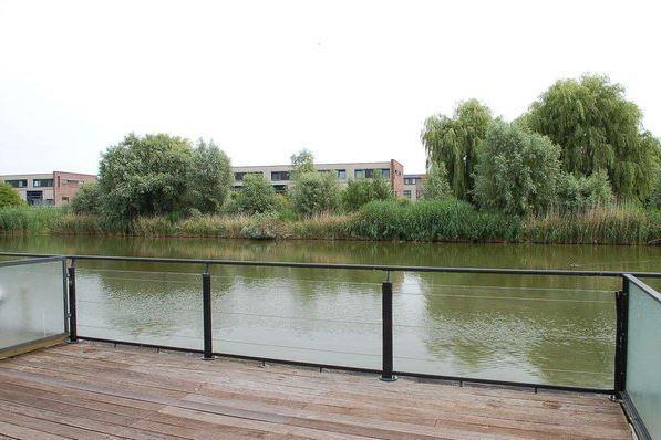 Bekijk foto 5 van Jacob van Ruysdaelstraat 76