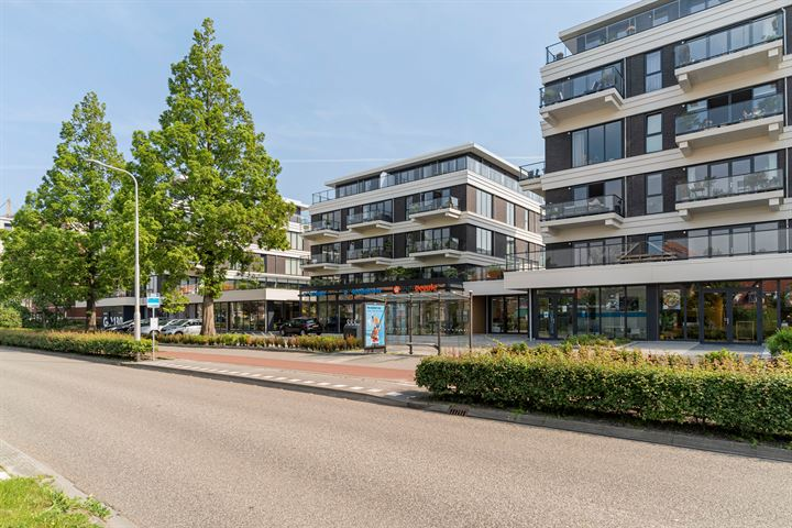 Reviusstraat 67