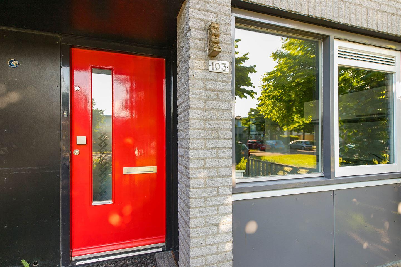 Bekijk foto 2 van Harpstraat 103