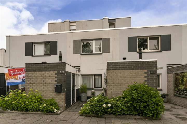 Wachtendonk 806
