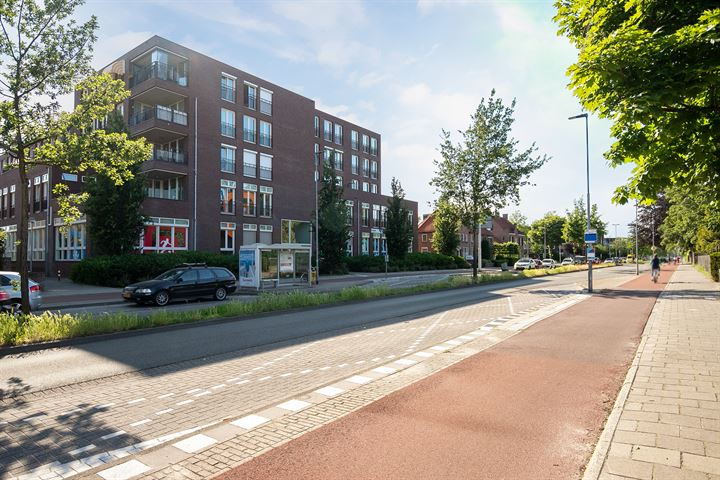 Boschdijk 383 01