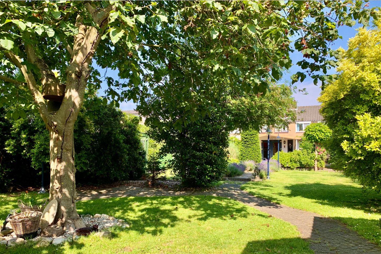 Bekijk foto 3 van Oranjeweg 38