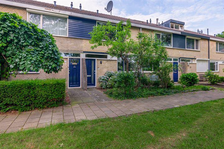 Basielhof 61