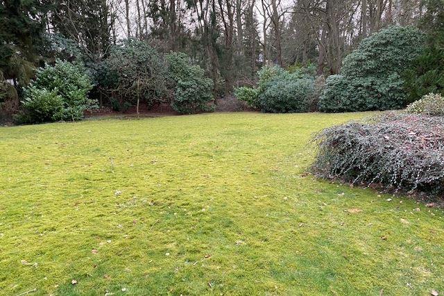 View photo 3 of Utrechtseweg 95 B